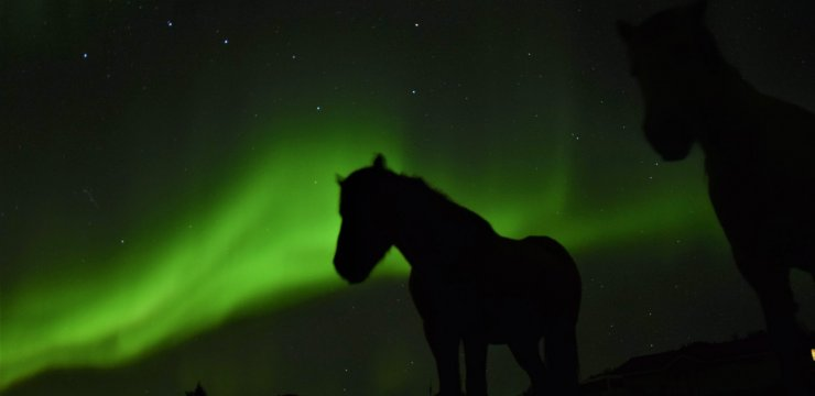 Riding & Northern Lights