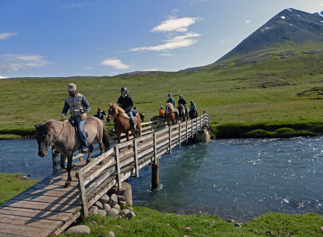Horses on the bridge